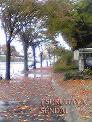 20061113tsurugayajp