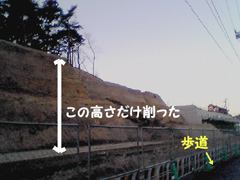20070204anyouji1jp