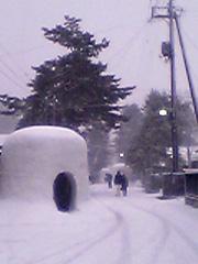 20070215kamakura3