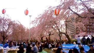 20080425tsutsujigaokajp