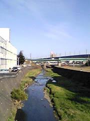20050407UmedagawaJP