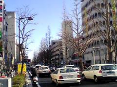 20050411HosoyokochoJP