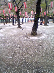 20050501NishikouenJP