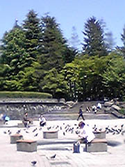 20050527KoutoudaiJP
