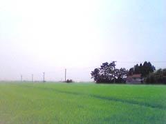 20050805RokugouJP