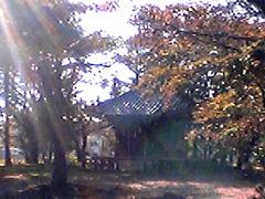 20051107YakushidouJP
