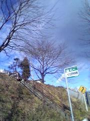 20060116Nanakita1JP