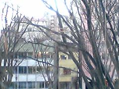 20060119Jouzenji7JP