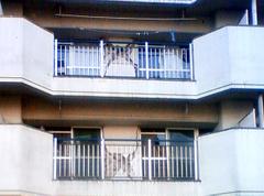 20110330_7