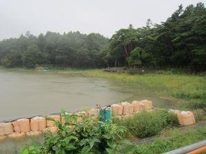 201109213