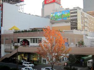 20111117_ebeans1