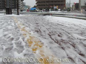 20120305_odawarahirocho