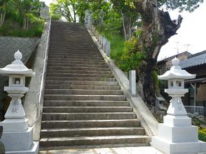 20120417haitaka_jinja_shrine_steps
